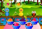 Forest Birds Feeding