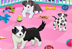 Play Puppy Pet Care Game