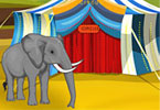 Play Elephant Circus Game
