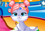Play Cute Pet Hairstyle Design Game