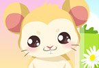 Play Hamster Care Game