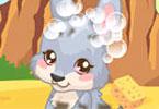Baby Kangaroo Care