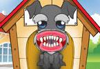 Doggy Dental Care