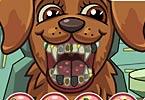 Pet Crazy Dentist