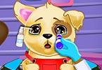 Baby Puppy Eye Doctor