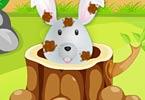 Happy Bunny Caring