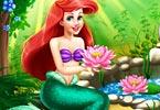 Ariel Water Garden