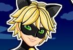 Miraculous Ladybug Cat Noir